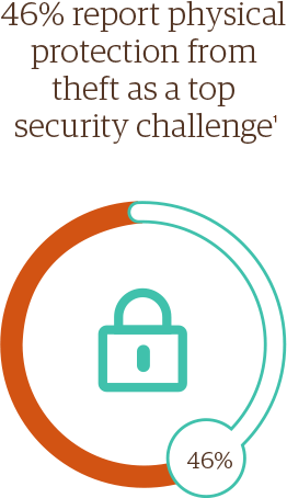 46% report physical protection from theft as a top security challenge1